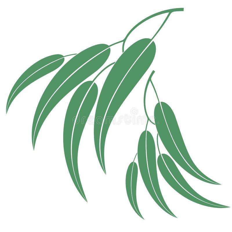 eucalyptus royaltyfri illustrationer