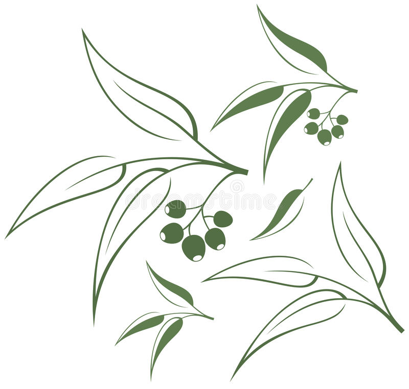 eucalyptus stock illustrationer