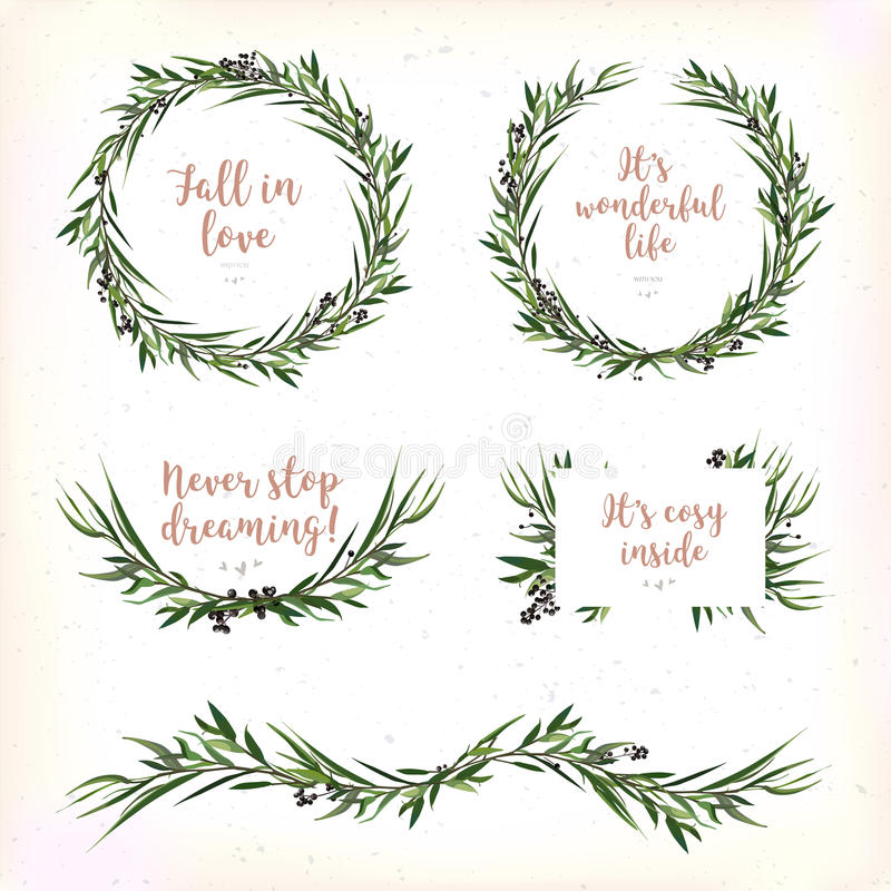 Eucalyptus Leaves circle round Green leaf Wreath berry branch be royalty free illustration
