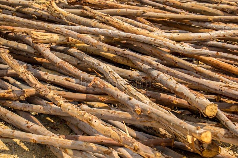 Eucalyptus Wood Wall Stock Image Of Dirty Material 21236555
