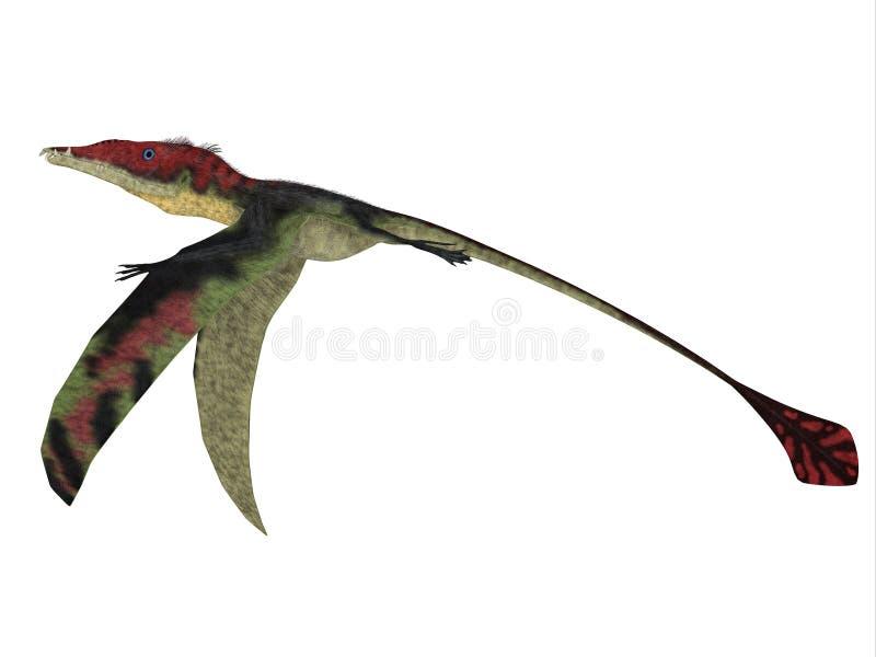 Eudimorphodon voa para baixo ilustração royalty free