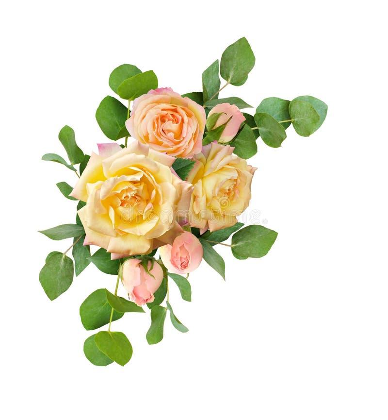 Eukaliptus opuszcza i kolor żółty róża kwitnie bukiet obraz royalty free