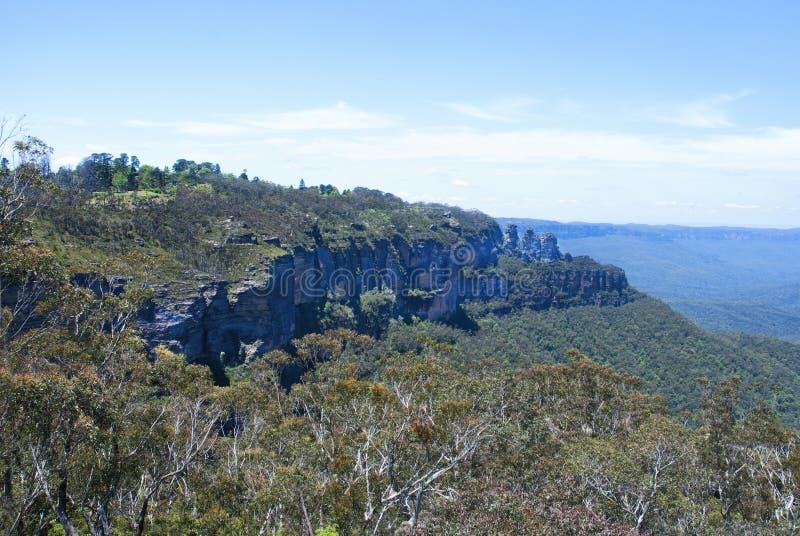 Eukaliptusowa dolina między skalistymi pasmami obraz royalty free