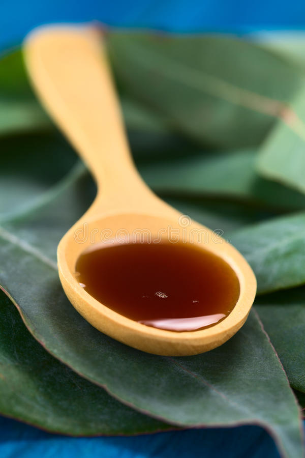 Eukalyptus-Husten-Sirup lizenzfreies stockfoto