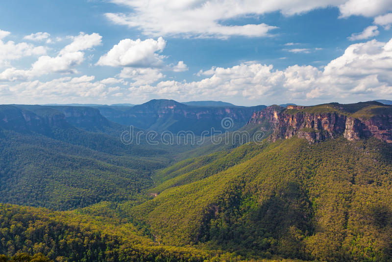 Eukalyptuswaldtal, blaue Berge, Australien lizenzfreie stockbilder