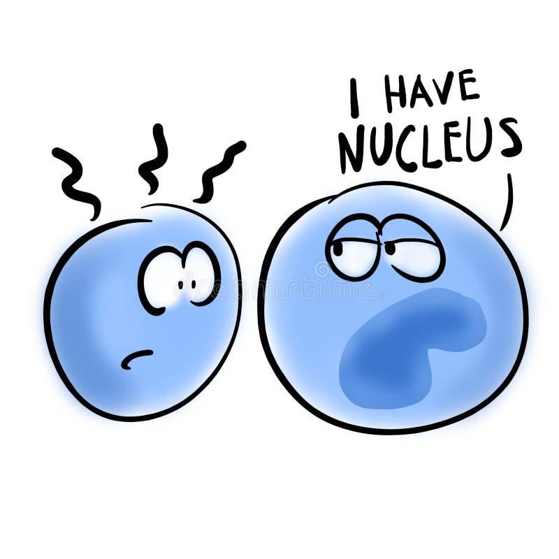 Eukaryotic cel heeft een kern royalty-vrije illustratie