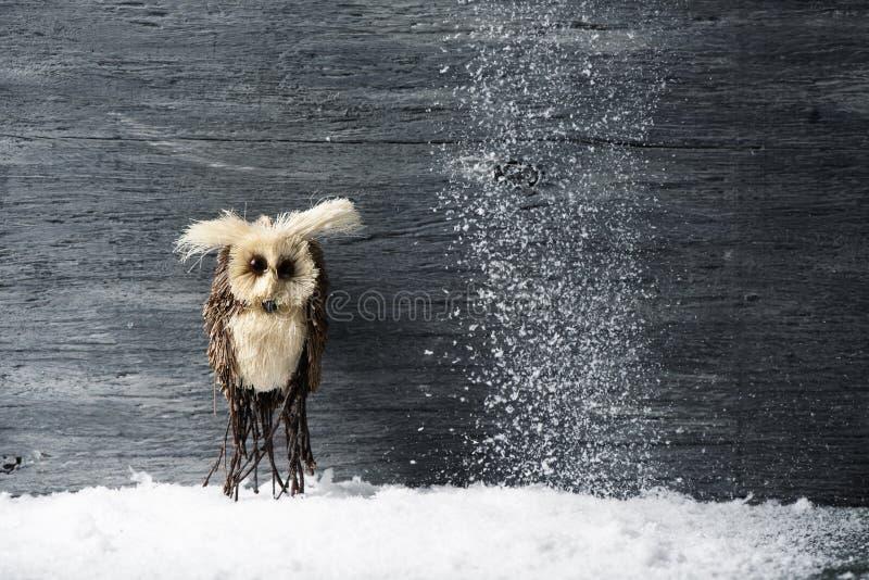 Eule auf dem Schnee stockfotos