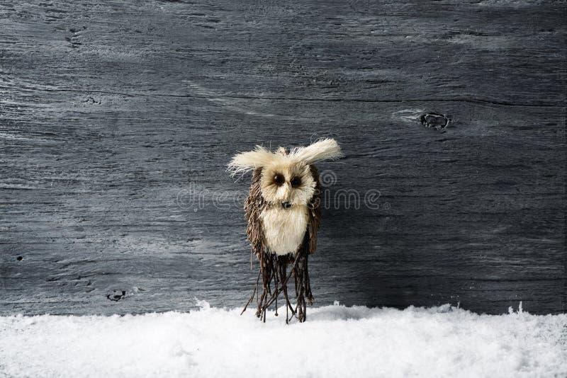 Eule auf dem Schnee lizenzfreies stockfoto