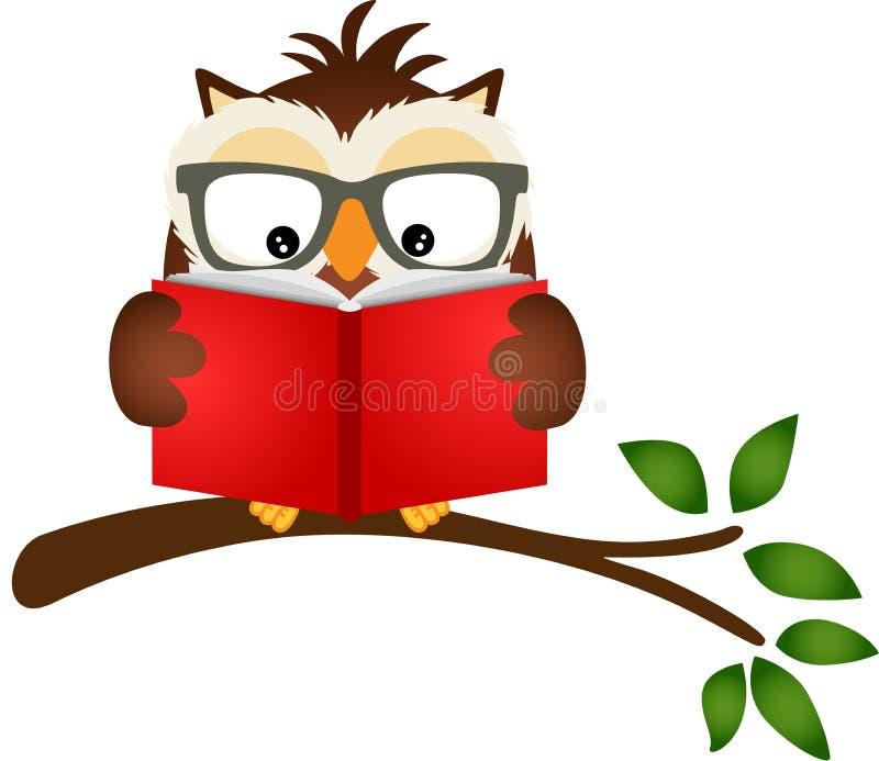 Eule, die ein Buch auf Baumast liest stock abbildung