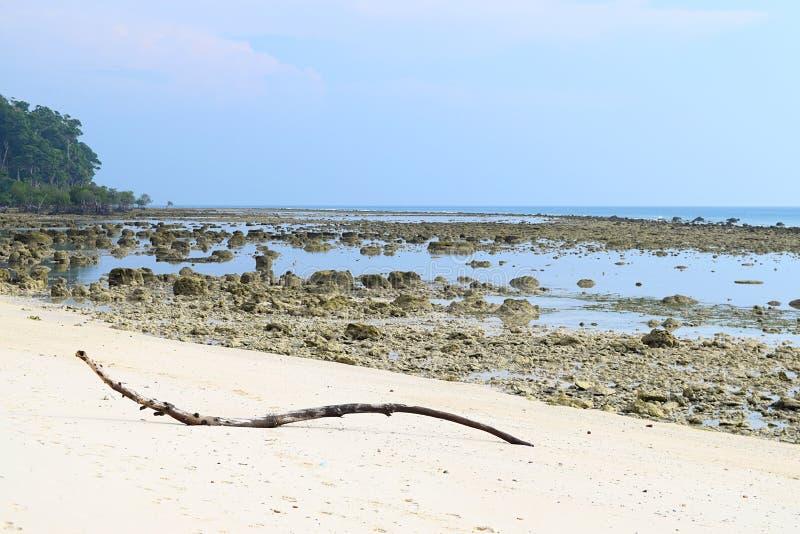 Eulittoral区域处于低潮中-岩石和桑迪原始海滩和清楚的天空蔚蓝-日落点,Laxmanpur,尼尔海岛,安达曼 免版税图库摄影