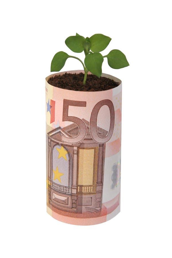 50 euro zdjęcie royalty free
