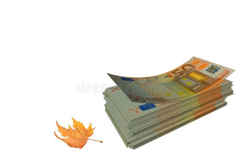 Euro banknot jesieni liści targowy tło zdjęcie royalty free