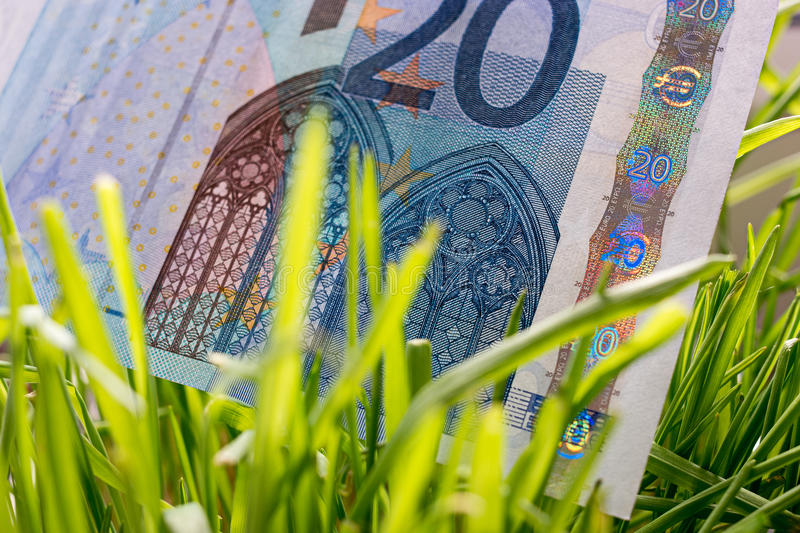 20 euro bill growing in the green grass, financial growth concept stock photo