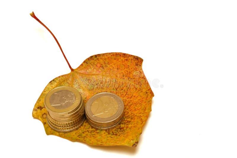 Euro caduta fotografie stock