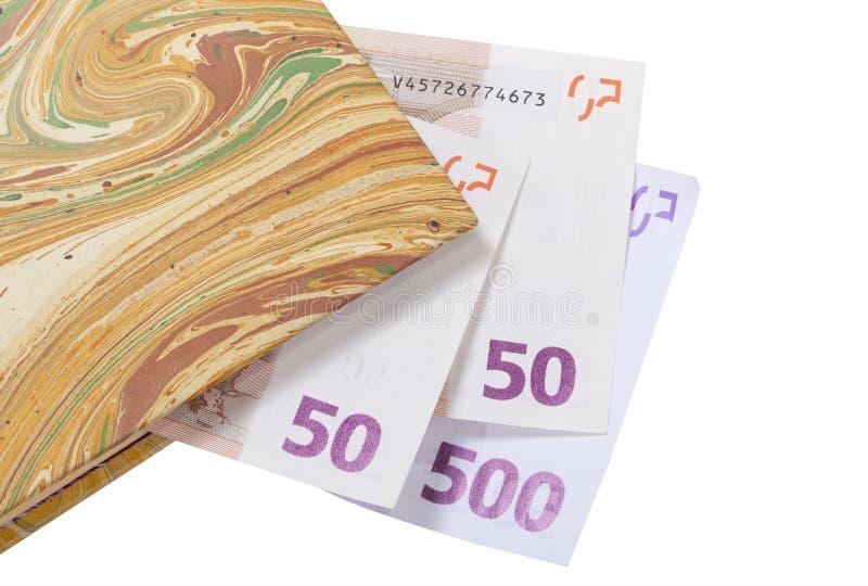 Euro die in een boek worden bespaard stock afbeelding