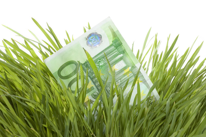 Download Euro Growth stock image. Image of euro, development, grass - 8291055