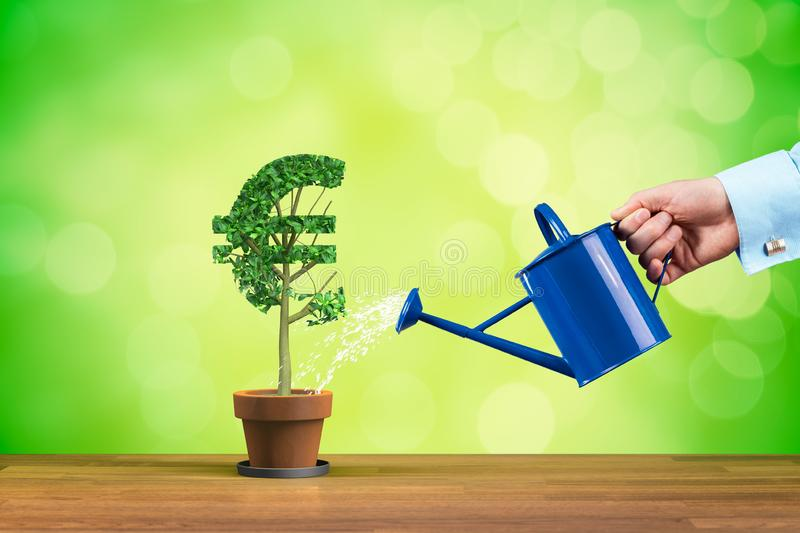 Euro income growth. Concept. Income growth represented by plant in shape of Euro symbol watered by CFO, investor, stockholder and similar business person royalty free stock photo