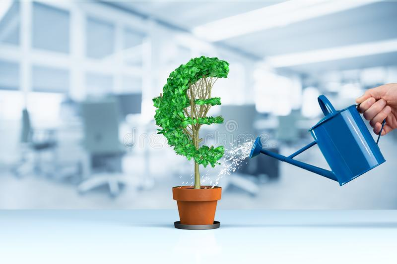 Euro income growth concept. Income growth represented by plant in shape of Euro symbol watered by CFO, investor, stockholder and similar business person stock photo
