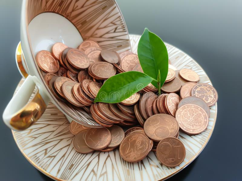 Euro money coins in a cup with plant outgrowth stock image