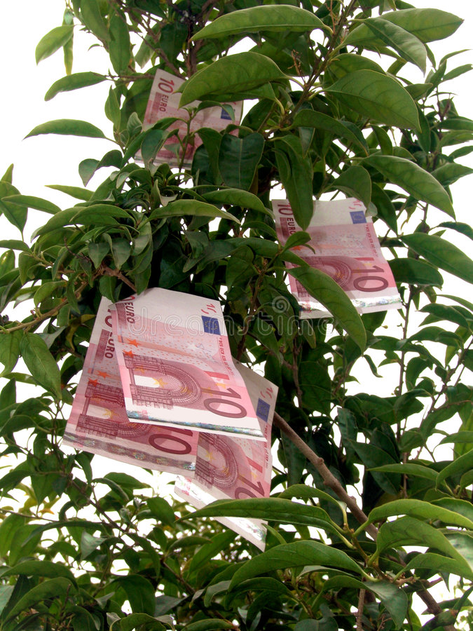 Free Euro Money Tree Stock Images - 4281744