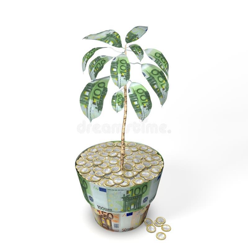 Euro pianta dell'albero dei soldi immagini stock