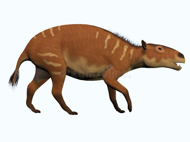 Eurohippuspaard op Wit stock illustratie