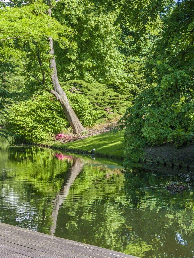 Euromast公园的部分的看法在鹿特丹 免版税库存图片