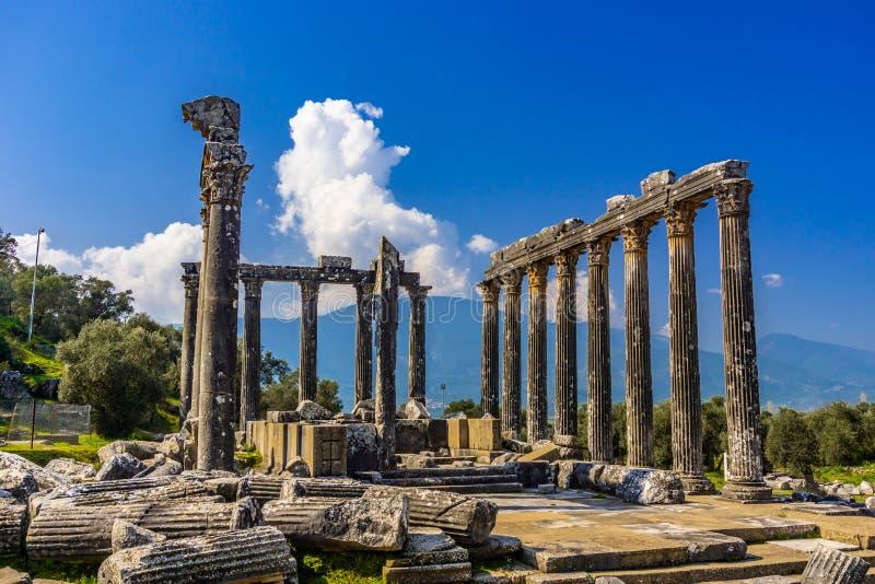 Euromos Euromus Ancient City. Soke - Milas road, Mugla, Turkey. Temple of Zeus Lepsynos was built in the 2nd century. Euromos Euromus Ancient City.  Soke - Milas stock images