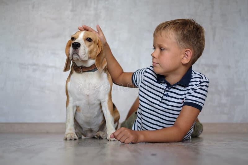 Europäischer Junge und Hundspürhund, der auf dem Boden des Raumes spielt lizenzfreies stockbild