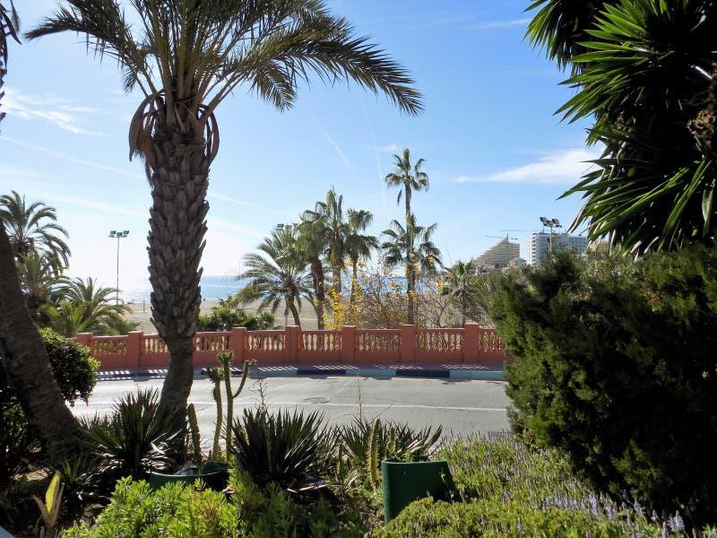 Download Europa zdjęcie stock. Obraz złożonej z hiszpania, palma - 106919934