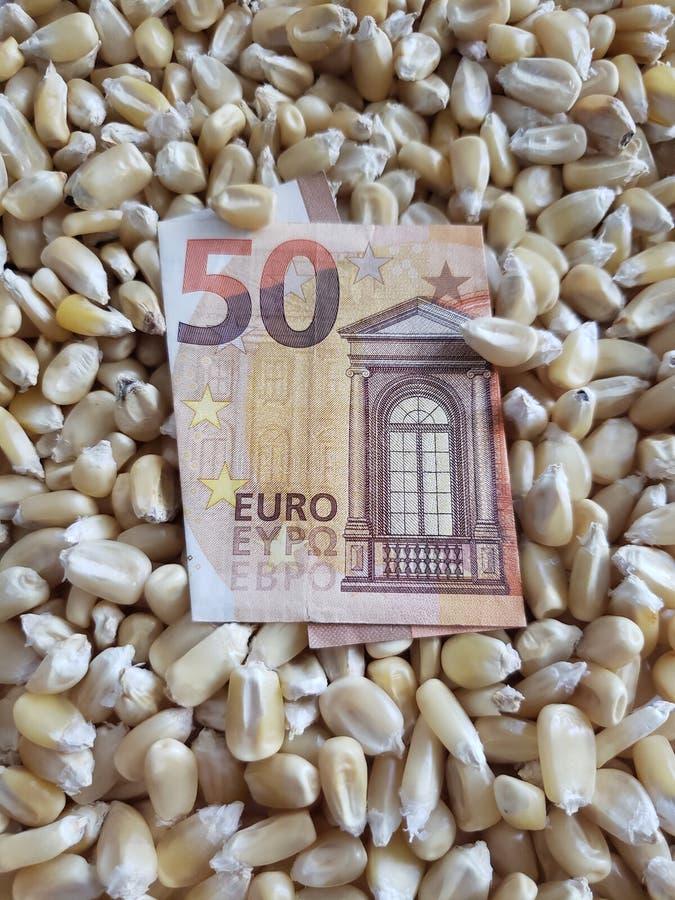 Europa, maïs die streek, droge graankorrels en Europees bankbiljet van vijftig euro veroorzaken stock foto