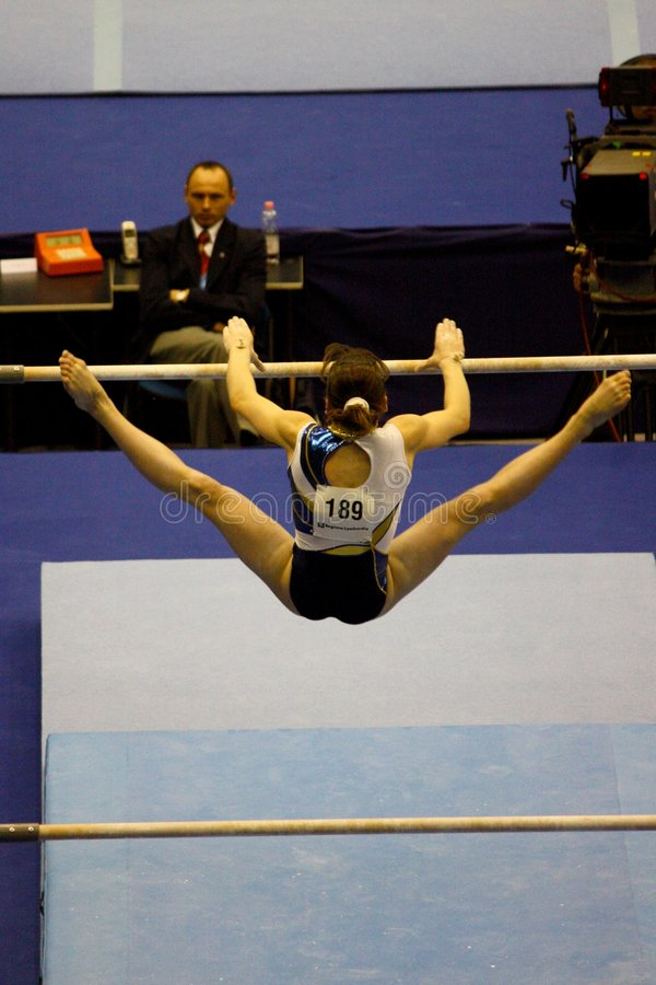 European Artistic Gymnastic Championships 2009