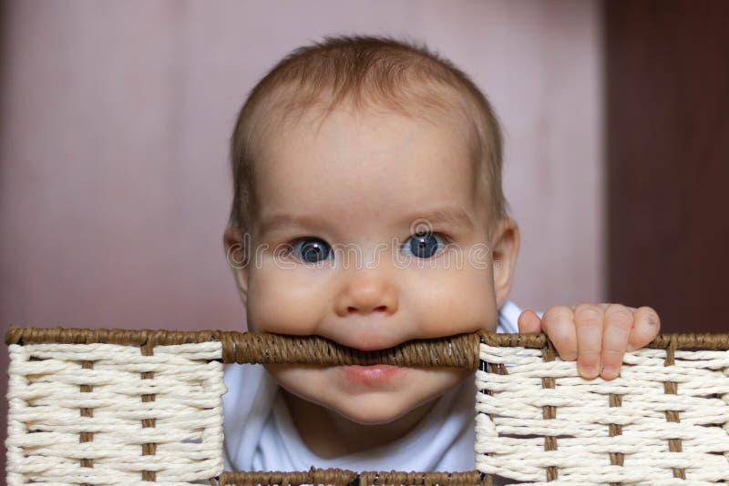 European Caucasian Joyful child, toddler, girl, boy nibbles handle in wicker basket In storage cabinet on dark. European Caucasian Joyful child, toddler, girl stock photo