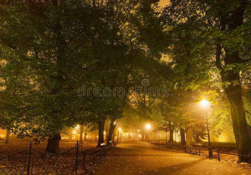 European city park at night. European city park with benches at night in autumn royalty free stock photo