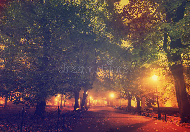 European city park at night. European city park with benches at night in autumn, vintage background royalty free stock photos