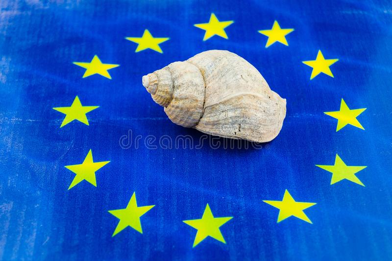 European fishing law. S to protect fish and shells royalty free stock images