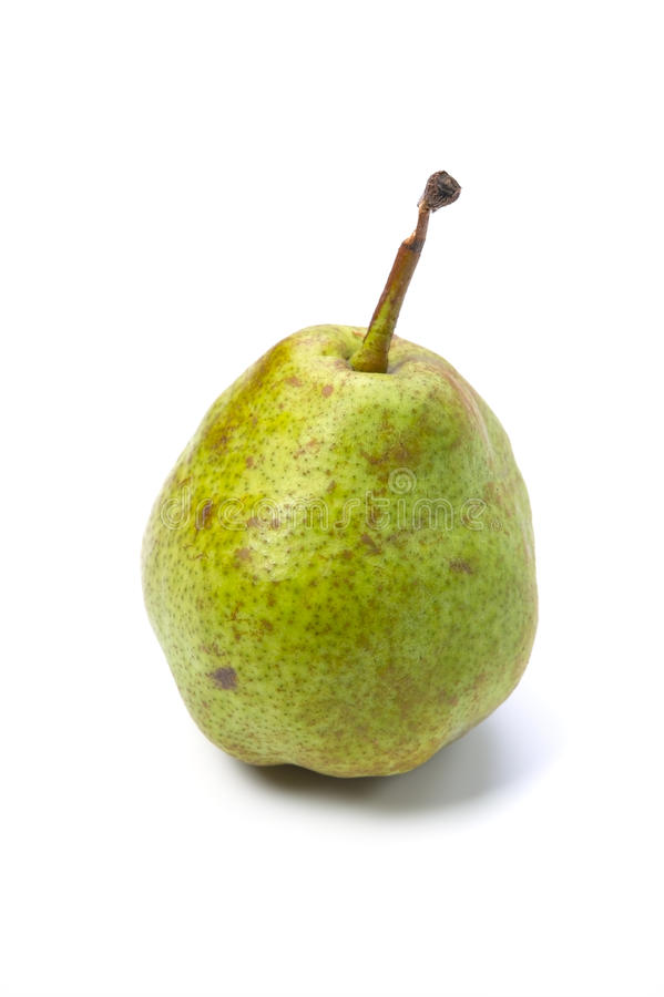 Download European pear stock photo. Image of ripe, plant, fresh - 27372800
