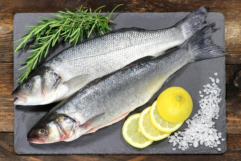 European seabass. Ready to cook royalty free stock photography
