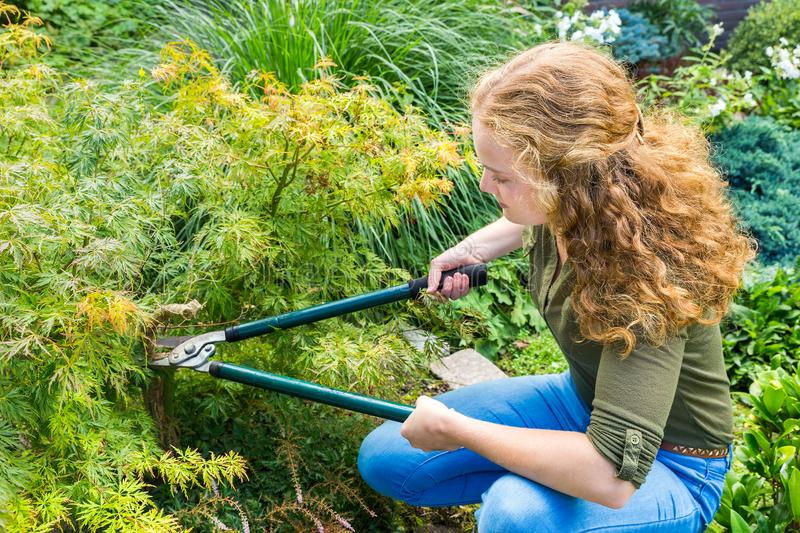 Young dutch woman pruning plant in garden royalty free stock images