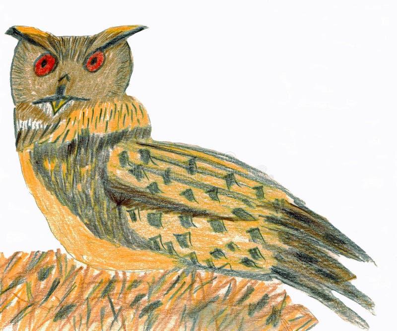 Europees-Aziatische Eagle-Uil - Kleurpotloden het Trekken vector illustratie