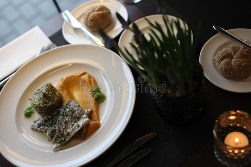 Europeisk kokkonst för restaurang, forellfilet royaltyfri fotografi