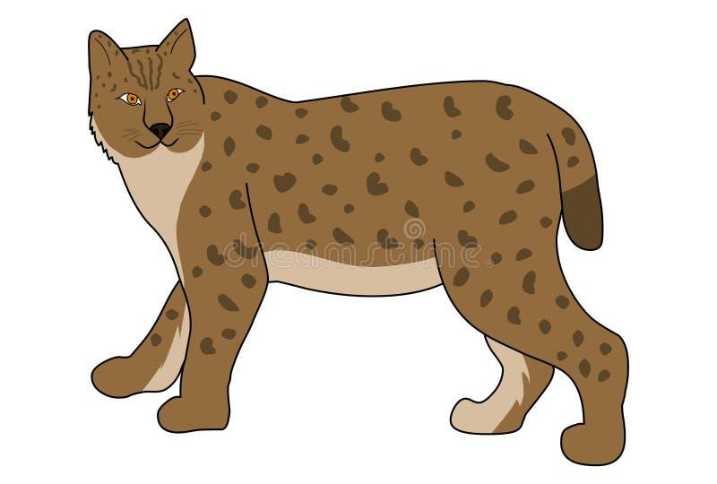 Europese lynx vectorillustratie Wilde kattenvector royalty-vrije illustratie