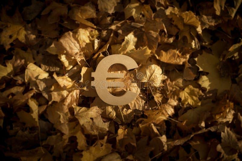 Eurovalutasymbol på Autumn Leaves i sol för sen afton arkivfoto