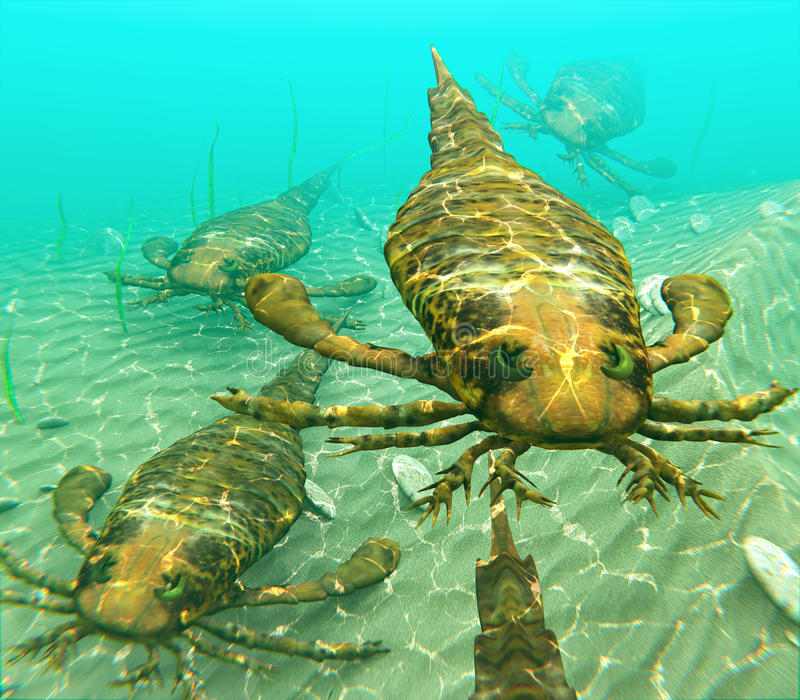 Eurypterids Swimming In A Pack. An illustration of eurypterids, also known as sea scorpions, traveling together in search of prey. Eurypterids are related to royalty free illustration
