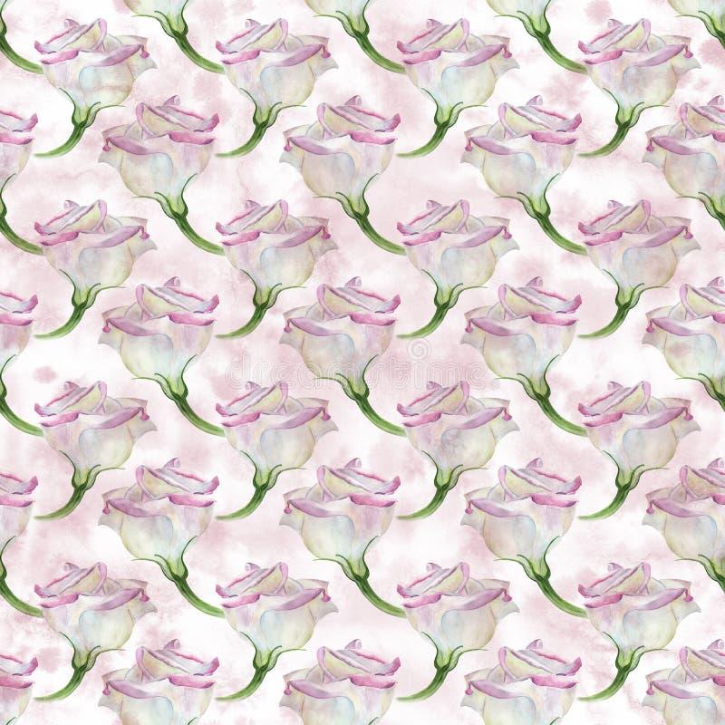 Eustoma - flores watercolor Composición decorativa en fondo de la acuarela Gráfico inconsútil del fondo ilustración del vector