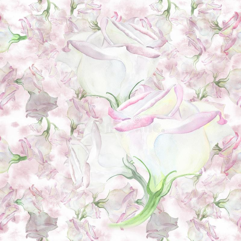 Eustoma - flores watercolor Composición decorativa en fondo de la acuarela Gráfico inconsútil del fondo libre illustration