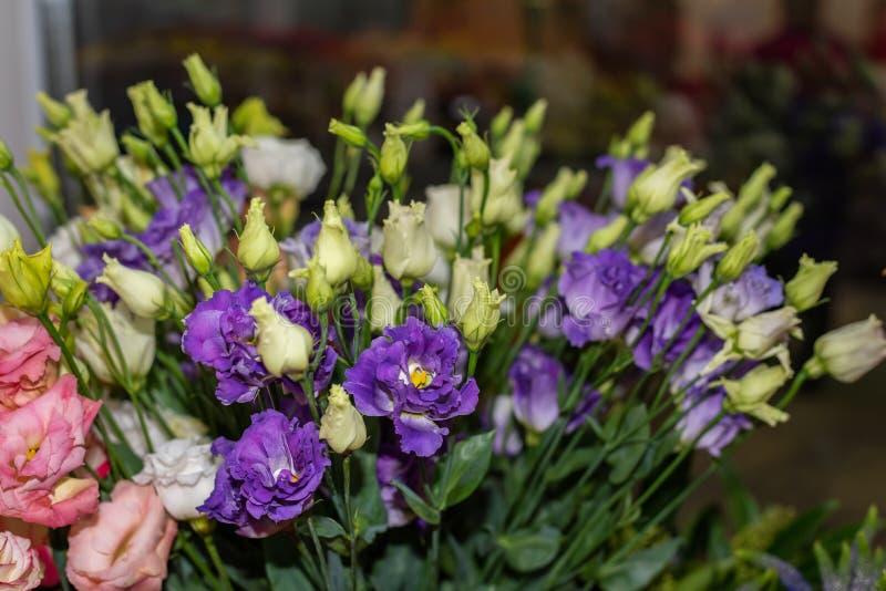Eustoma im Blumenladen lizenzfreie stockbilder