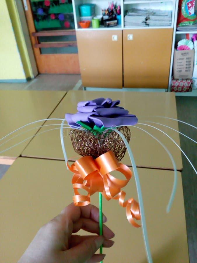 EVA piany kwiat zdjęcia royalty free