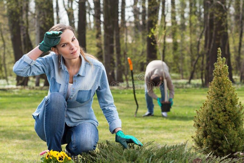 Evakuera arbete i trädgård arkivfoto