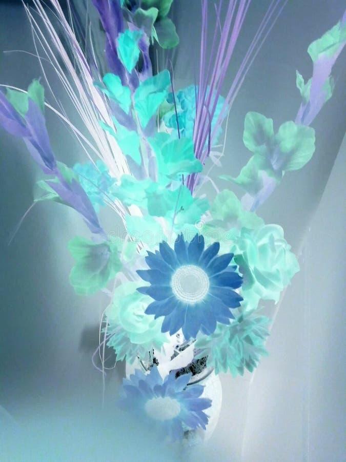 Evanescent. Flower negative flash stock images